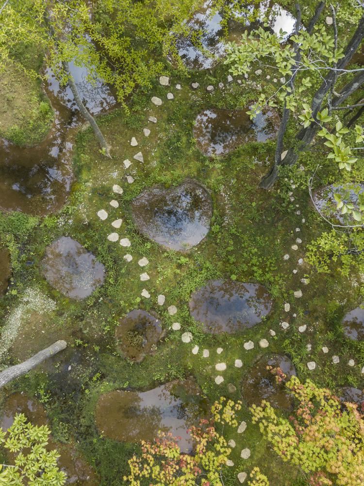 石上純也の「水庭」