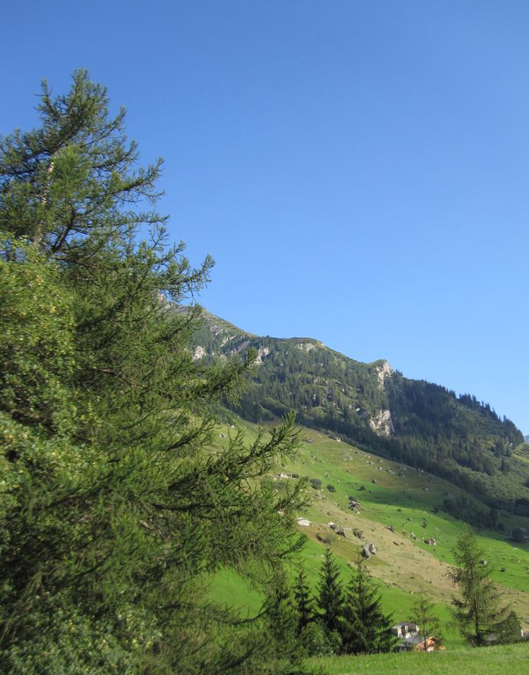 グラウビュンデンの山岳地帯
