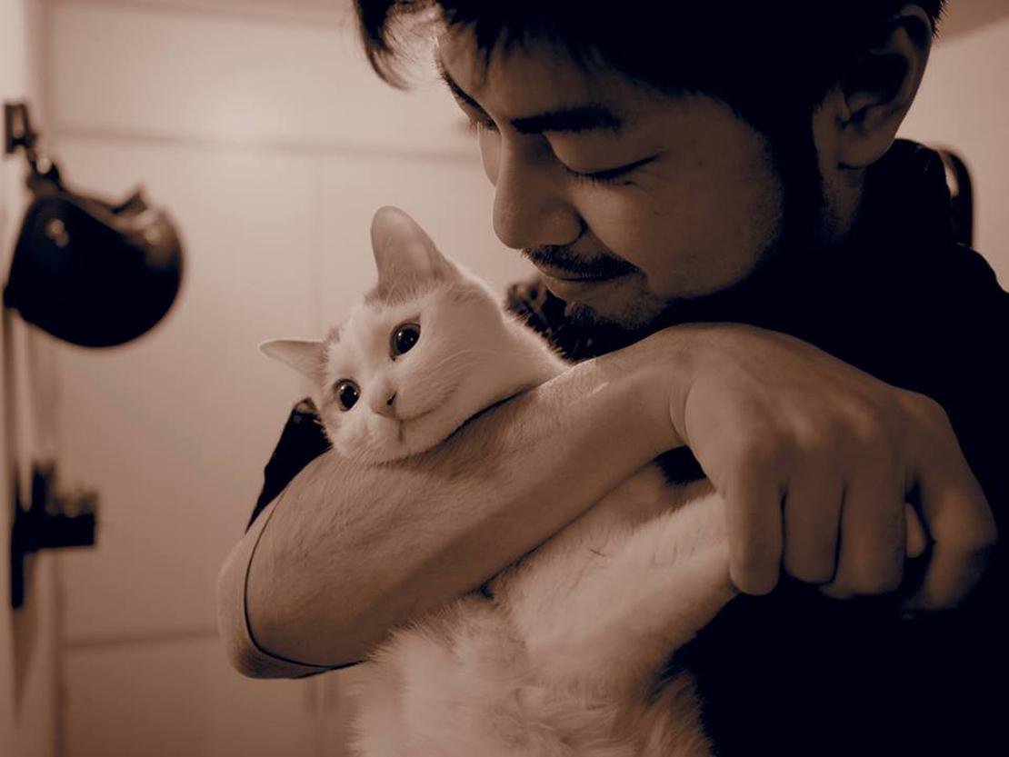 猫と人見智さん