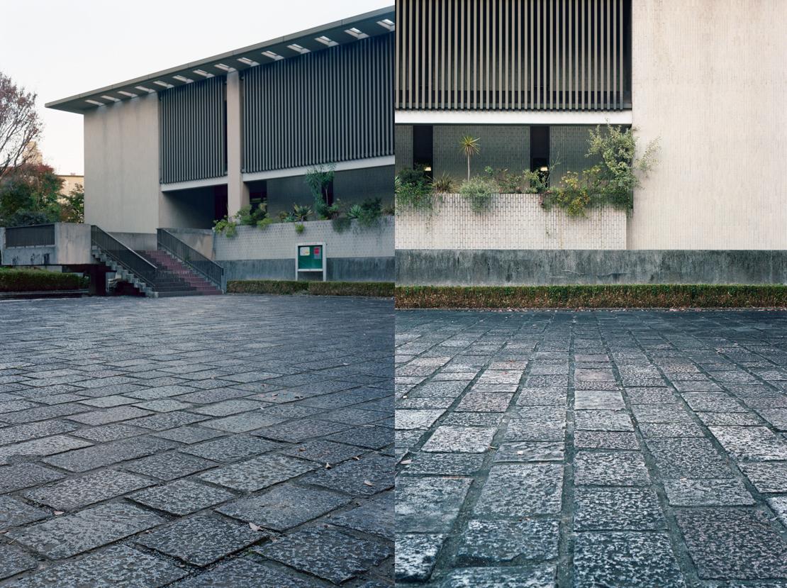 日本近代文学館の前庭の石畳