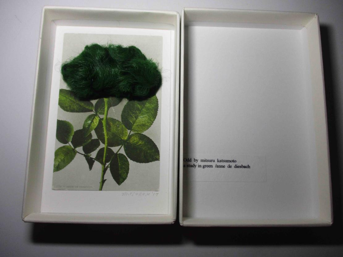 勝本みつるのOdd by Mitsuru Katsumoto「a study in green/anne de diesbach 」