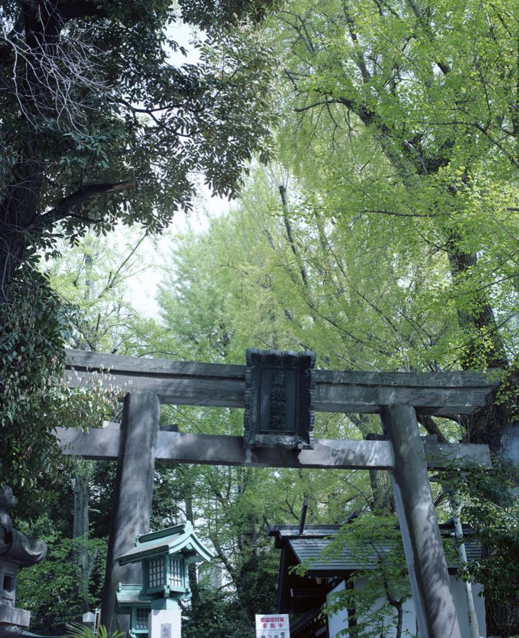 浅草橋(台東区)の風景